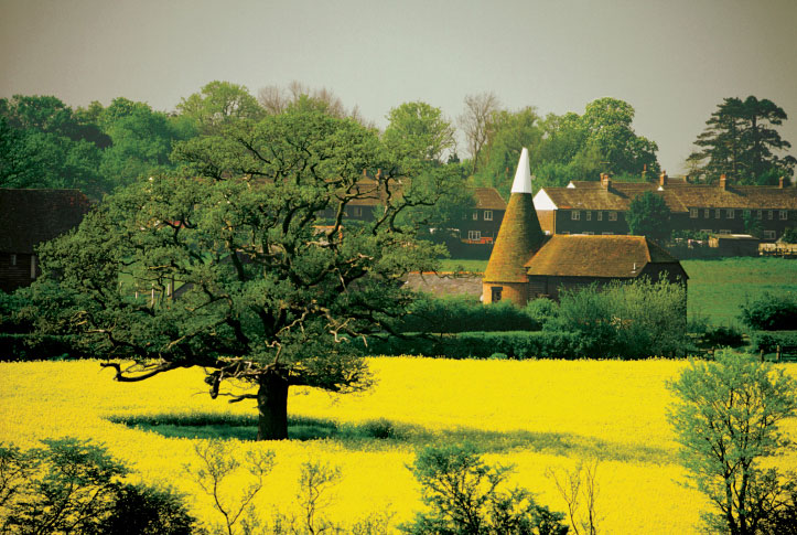 Coutryside of Kent